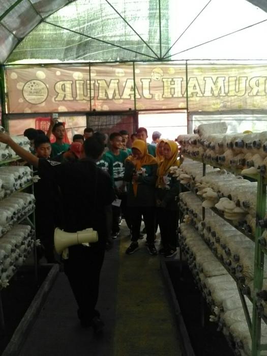 Outbound Edukasi Jawa Timur 085100482950 Wisata Bukit Flora Rumah Jamur