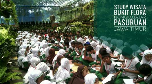 Wisata Bukit Flora 085100482950 Pasuruan Paket Outbound Siswa Sekolah Berikan