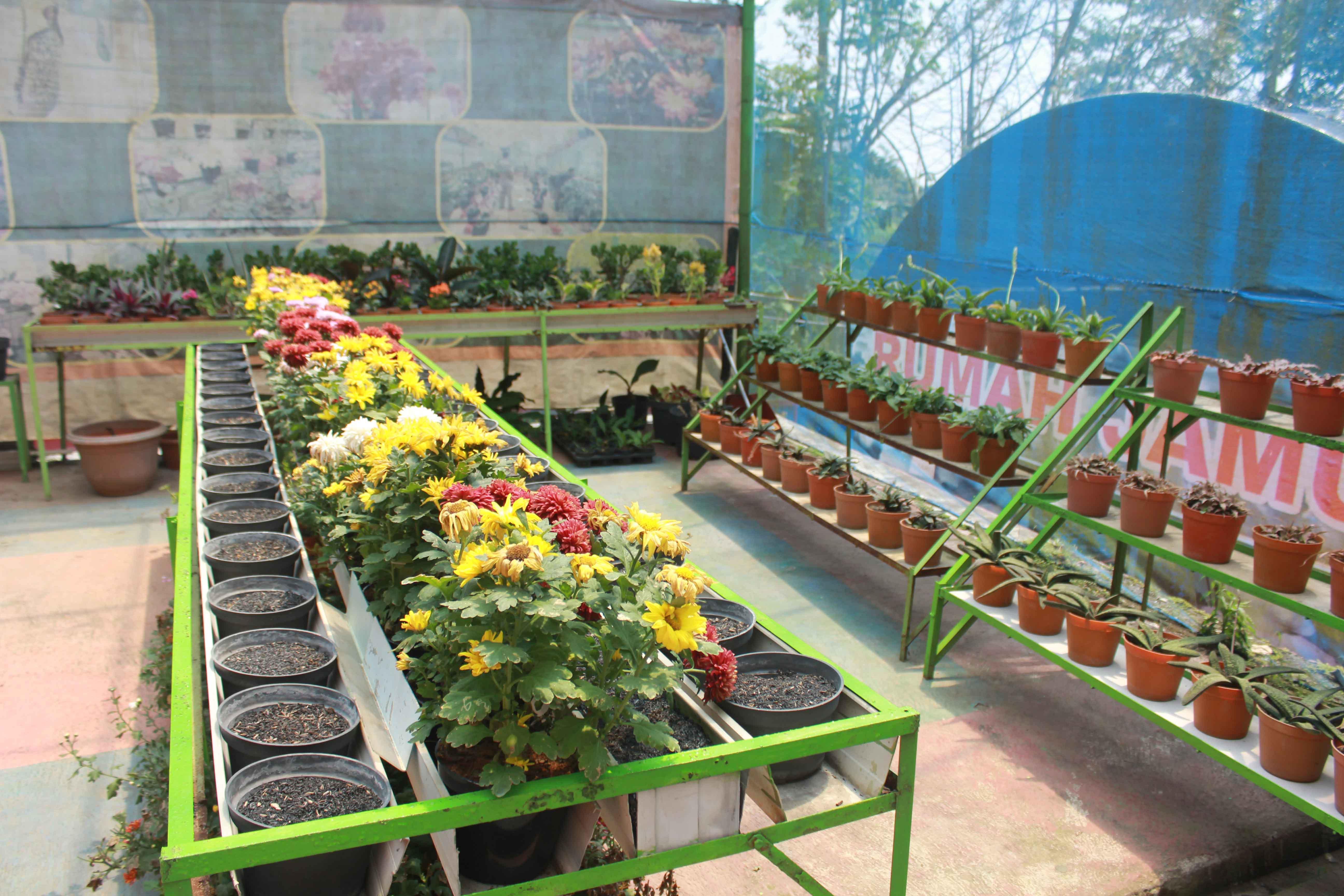 Wisata Bukit Flora Blog Museum Online Kabupaten Pasuruan Img 1784