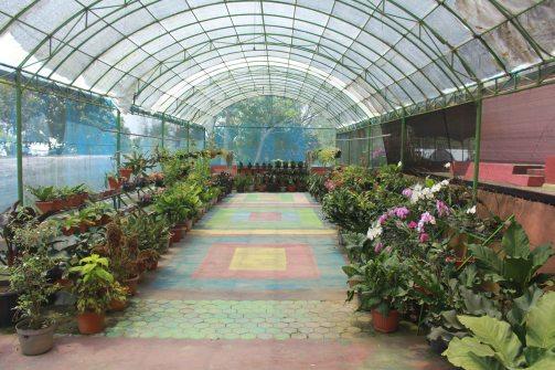 Wisata Bukit Flora Blog Museum Online Kabupaten Pasuruan Tempat Keluarga