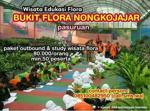 Wisata Pasuruan 085100482950 Outbound Bukit Flora Nongkojajar Terbuka Bagi Pengunjung