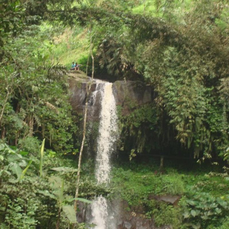 Wisata Pendidikan Bukit Flora Desa Tutur Kecamatan Sumber Nyonya Air
