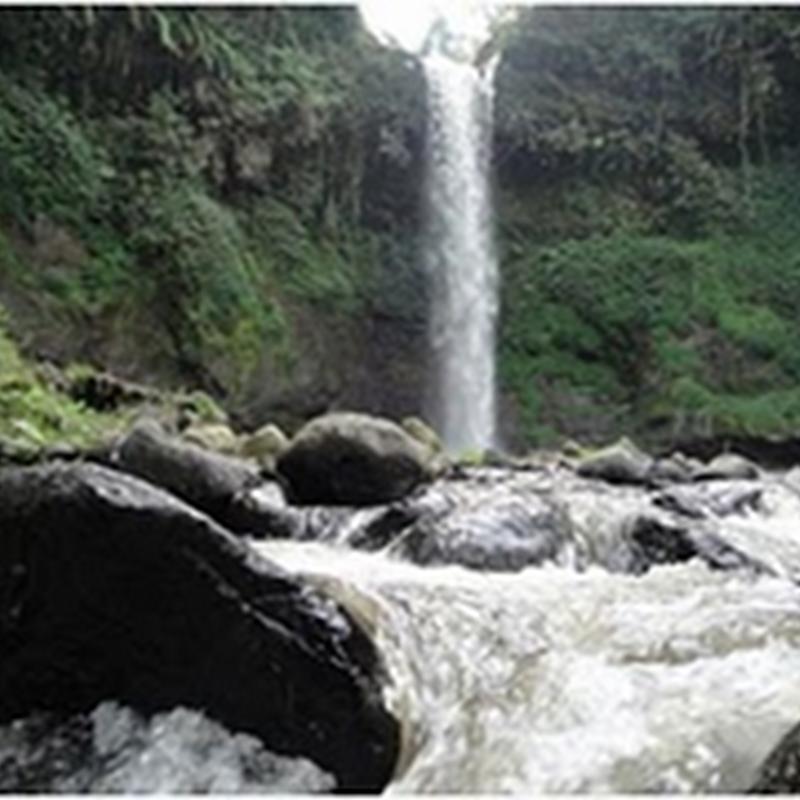 Wisata Pendidikan Bukit Flora Desa Tutur Kecamatan Waterfall Love Air