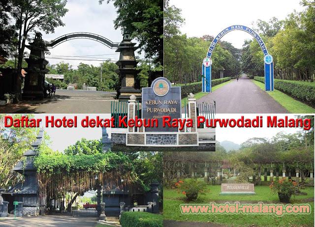 Daftar Lengkap Hotel Dekat Kebun Raya Purwodadi Malang Info Dikenal