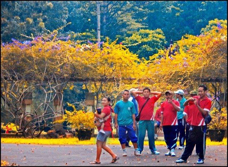 Jogging Kebun Raya Purwodadi Dutabetonmandiri Anggota Staf Satpam Melakukan Agenda