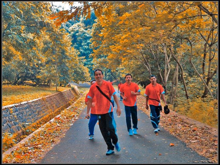 Jogging Kebun Raya Purwodadi Dutabetonmandiri Kab Pasuruan