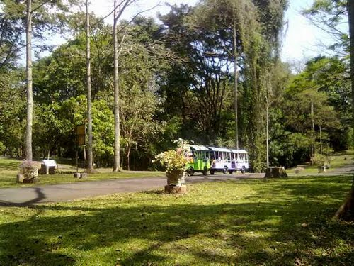 Kebun Raya Purwodadi Desa Wisata Tambaksari Kab Pasuruan