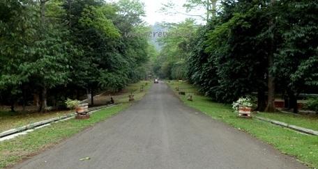 Kebun Raya Purwodadi Pasuruan Jawa Timur Wongcrewchild Alamat Kab