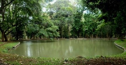 Kebun Raya Purwodadi Pasuruan Jawa Timur Wongcrewchild Harga Tiket Masuk