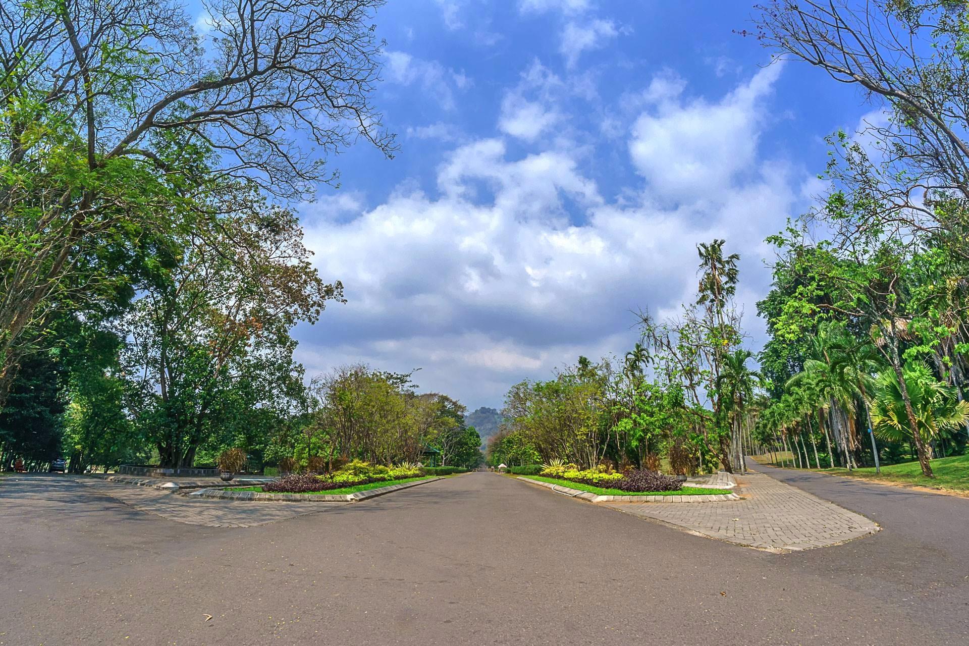 Kebun Raya Purwodadi Place Kab Pasuruan