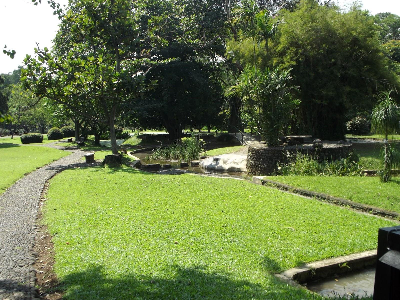 Rekomendasi Tempat Wisata Makan Kebun Raya Purwodadi Terletak Tepi Jalur