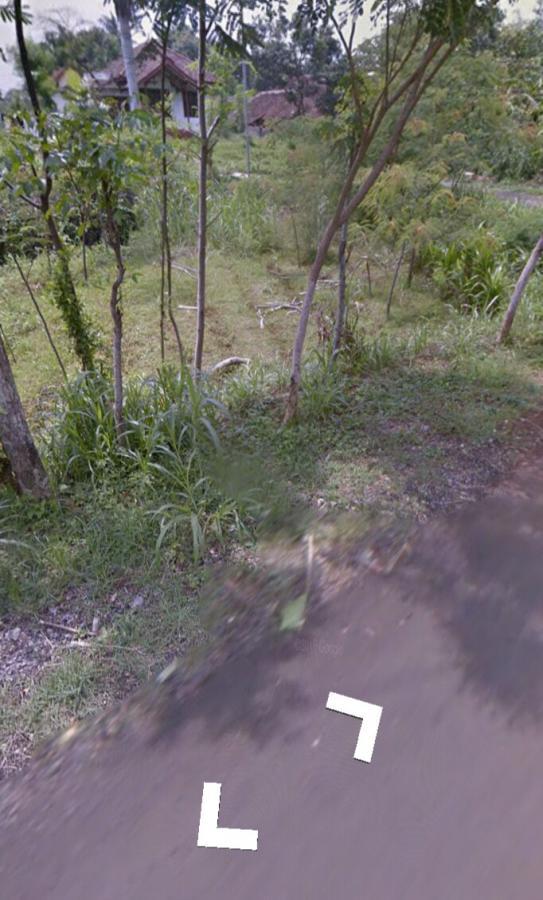 Tanah Dijual Depan Kebun Raya Purwodadi Pasuruan Kab