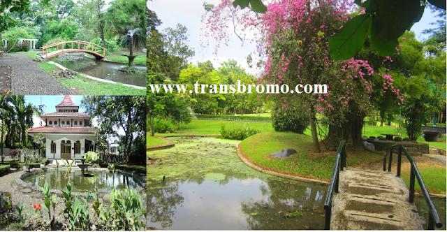 Wisata Pasuruan Jawa Timur Kebun Raya Purwodadi Kabupaten Foto 2