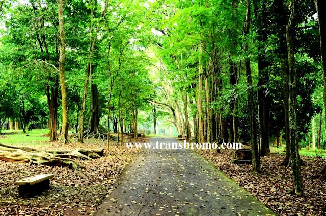 Wisata Pasuruan Jawa Timur Kebun Raya Purwodadi Kabupaten Kab