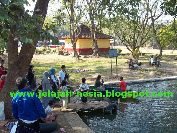 Www Jelajah Nesia Blogspot Pesona Keindahan Kebun Raya Keragaman Koleksi
