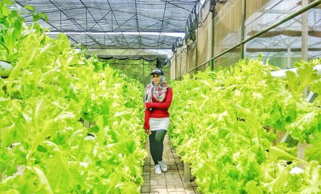 Lokasi Harga Tiket Masuk Bhakti Alam Pasuruan 2018 Liburs Reco
