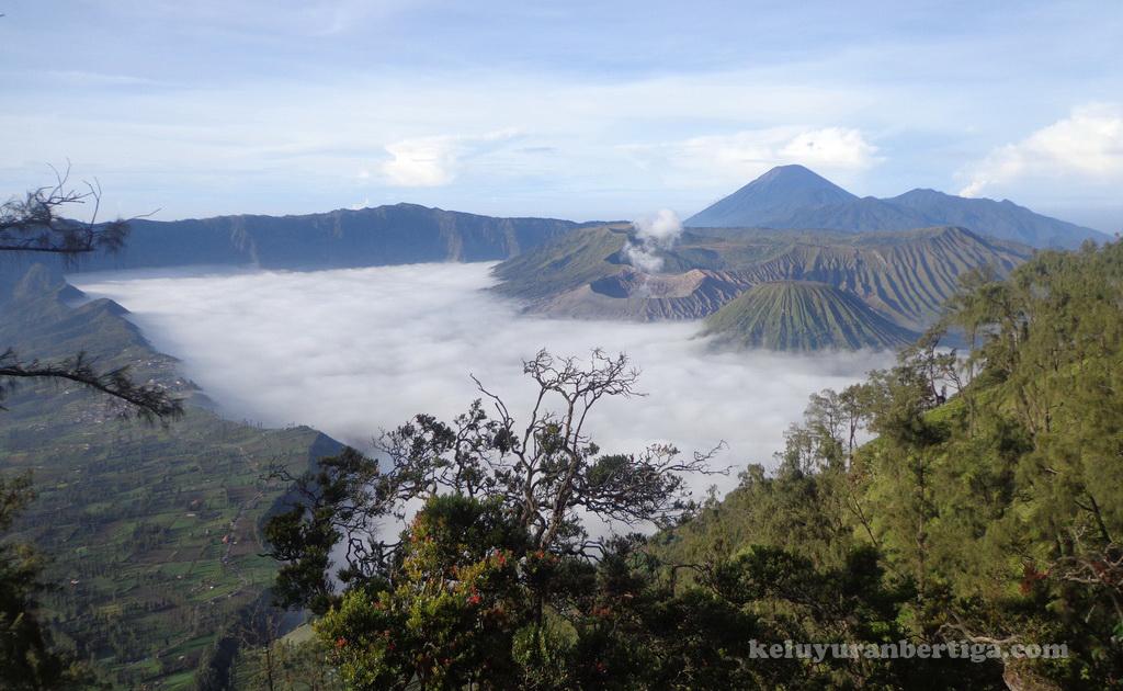 Exploring Beauty Nusantara 15 Tempat Wisata Kab Pasuruan Wajib Kunjungi