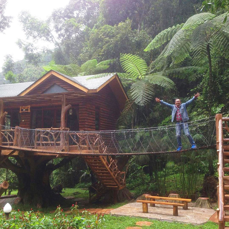 8 Amazing Treehouses Indonesia Stay Taman Safari Exterior Harry Marco