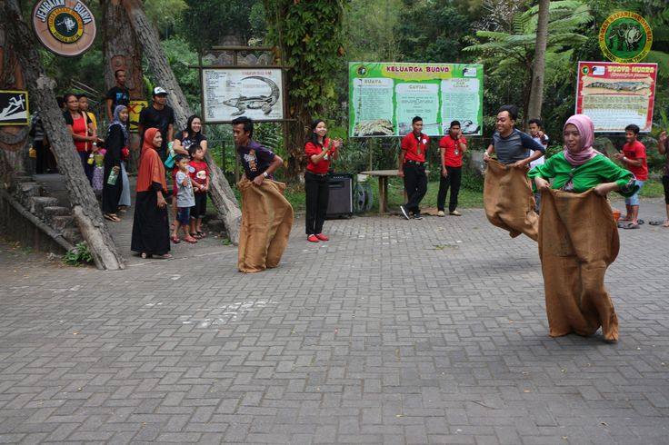 8 Taman Safari Indonesia Images Pinterest Keseruan Event Lomba Balap