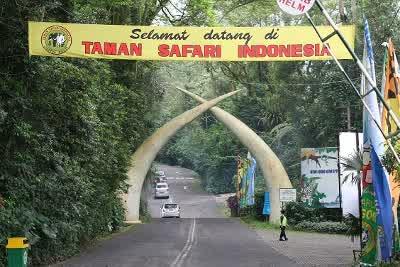 Taman Safari Cisarua Bogor Indonesia Masterz Seo 2 Kab Pasuruan