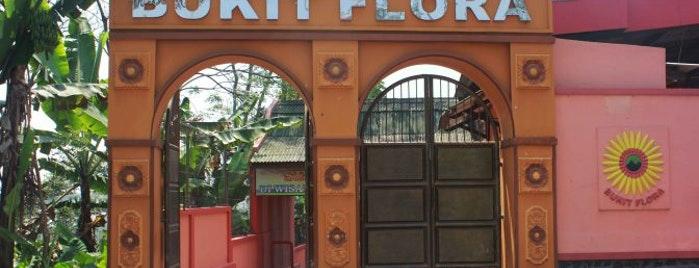 Dinas Kebudayaan Pariwisata Kab Pasuruan Studi Wisata Bukit Flora Tretes