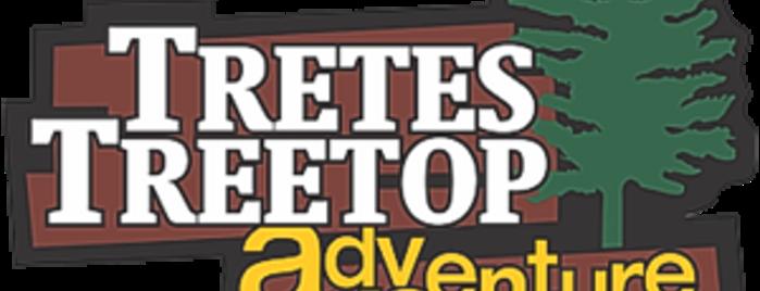 Dinas Kebudayaan Pariwisata Kab Pasuruan Tretes Treetop Adventure Park