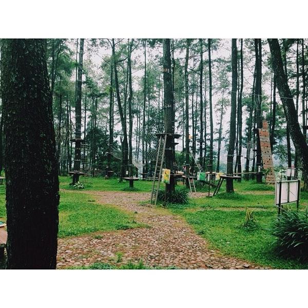 Foto Tretes Treetop Adventure Park Lintasan Diambil Oleh Adi 1