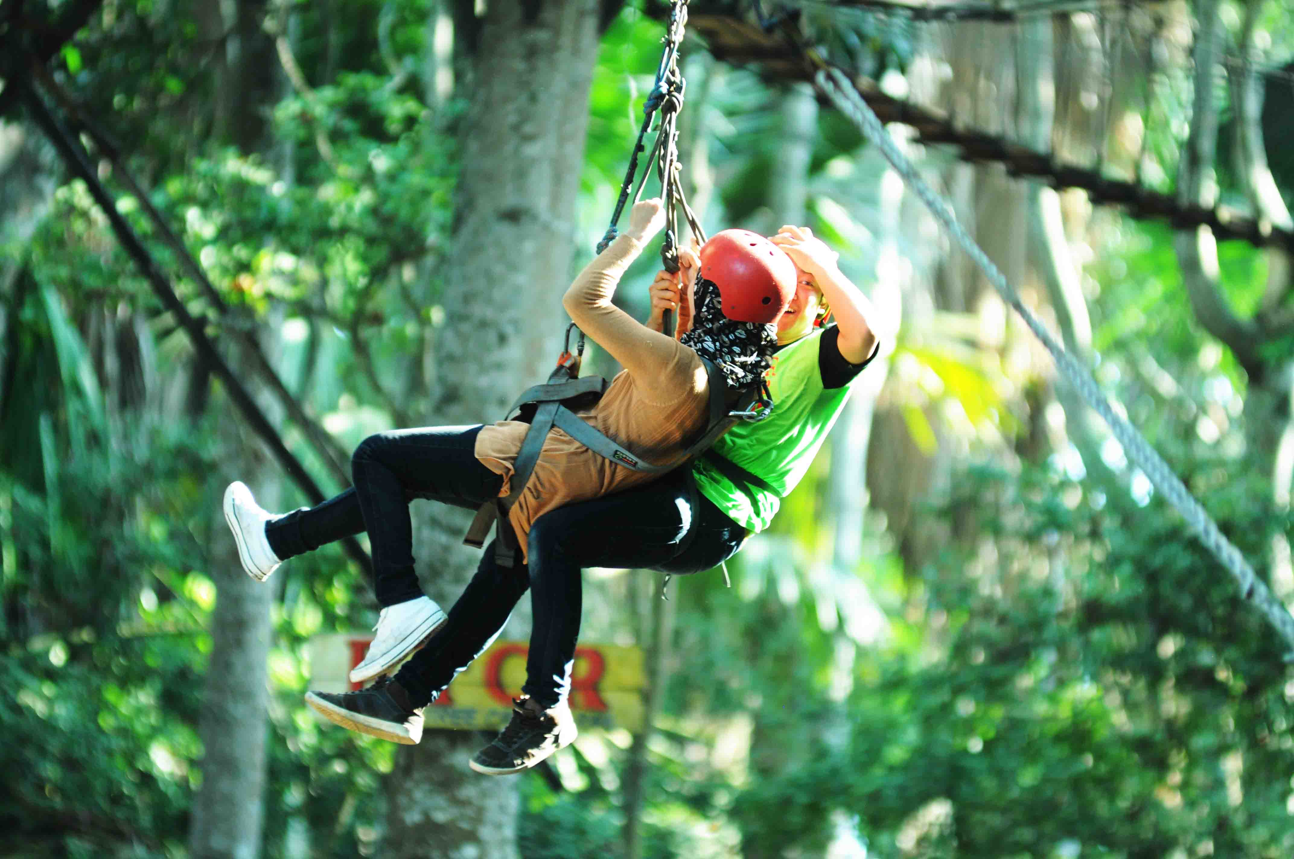 Kemudahan Berbelanja Kayu Terbaik Potp Tanjung Papuma Tretes Treetop Adventure