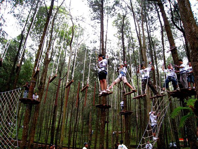 Kopeng Treetop Adventure Park Harga Tiket Tretes Kab Pasuruan