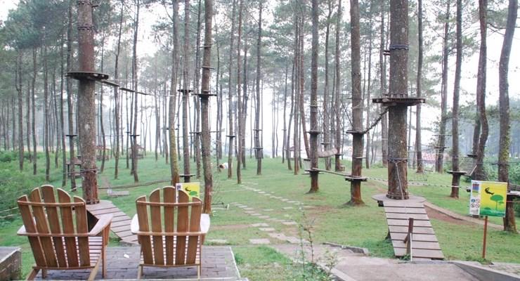 Lokasi Outbound Bandung Treetop Adventure Park Lembang Tretes Kab Pasuruan