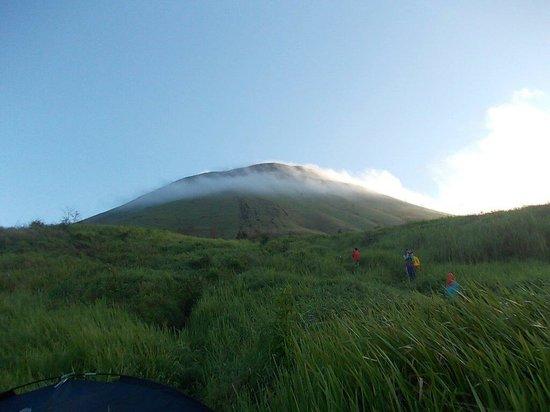 Top 10 Kaliandra Eco Resort Farm Prigen Mount Penanggungan Tretes