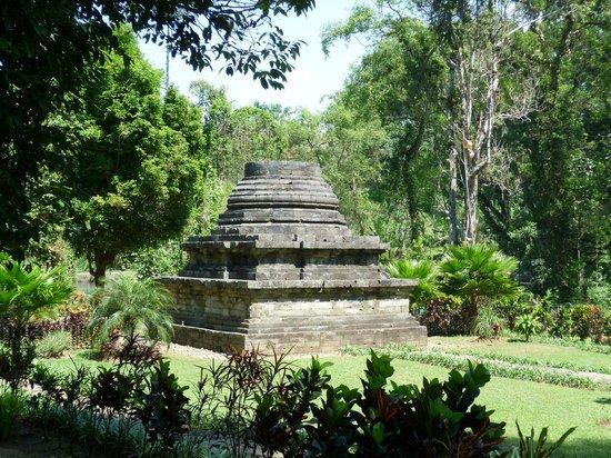 Top 10 Kaliandra Eco Resort Farm Prigen Sumberawan Temple Tretes