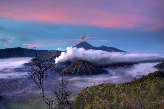 Top 10 Tretes Treetop Adventure Park Prigen Javadipa Travel Kab