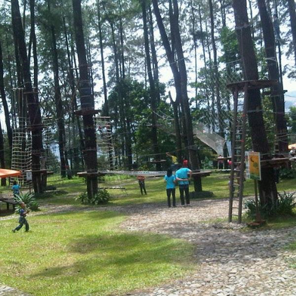 Tretes Treetop Adventure Park Lintasan Kab Pasuruan