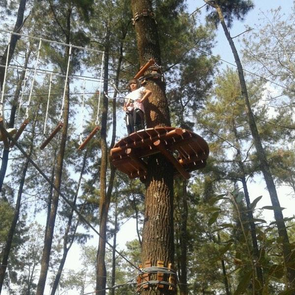 Tretes Treetop Adventure Park Pist Da Fotograflar 9 2012 Tarihinde
