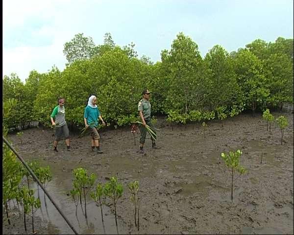 Desa Sambilawang Koran Muria Pati Meyakini Sebuah Pantai Berada Dekatnya