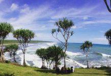 Hutan Mangrove Pantai Sambilawang Archives Hotel Indonesia Daftar Lengkap Tempat