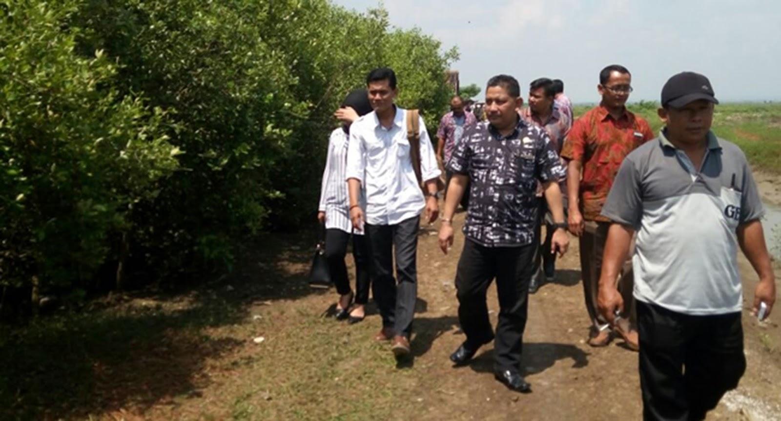 Menikmati Keindahan Hutan Bakau Pantai Sambilawang Desa Kabupaten Pati Memiliki