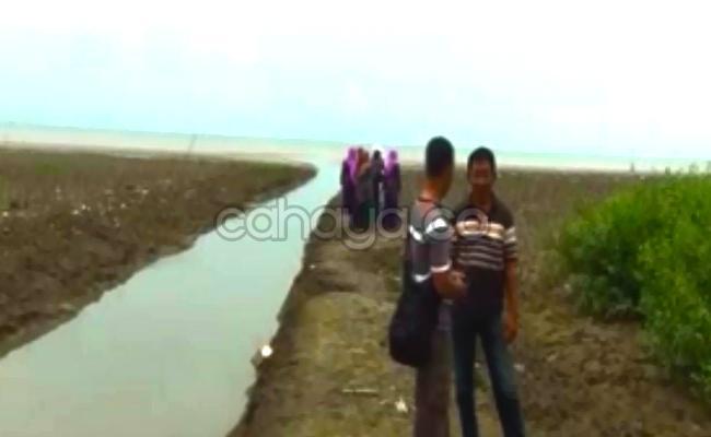 Pantai Sambilawang Destinasi Wisata Pati Cahaya Hutan Mangrove Kab