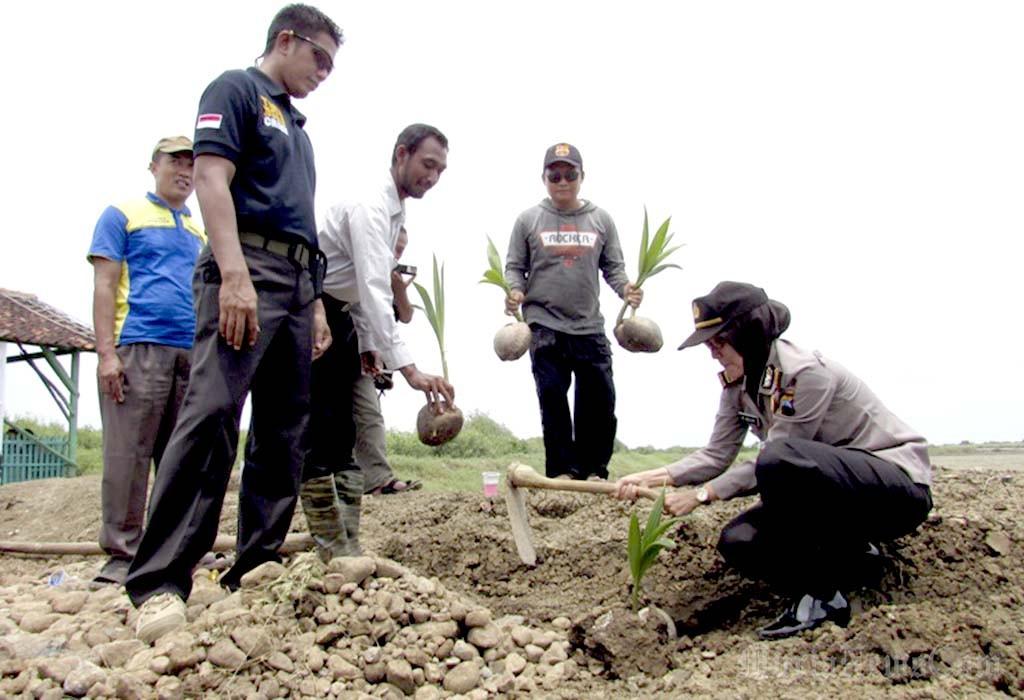 Pati Murianewscom Laman 4 Penambahan Flora Berupa Kelapa Kopyor Pantai