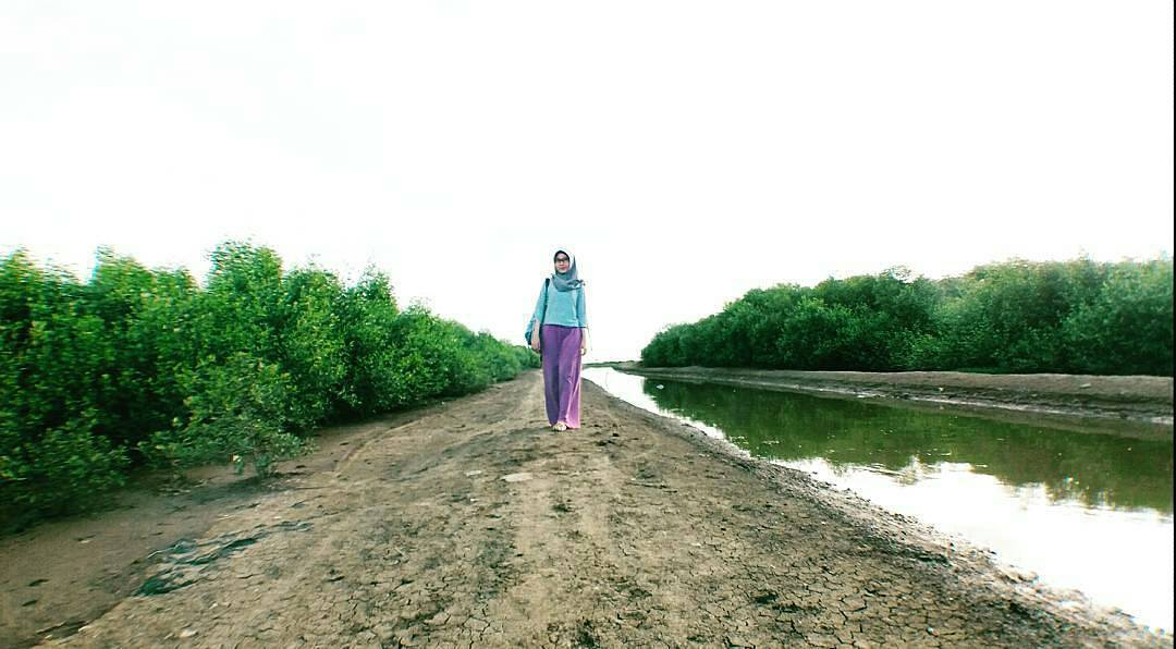 Pesona Keindahan Destinasi Wisata Pantai Sambilawang Trangkil Pati Jawa Tengah