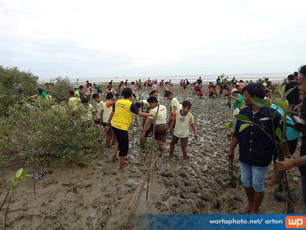 Tumbuhkan Kesadaran Lingkungan Dlh Pati Bersama Komunitas Sekolah Tanam Mangrove