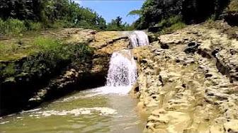 Wisata Pati Youtube Hutan Mangrove Pantai Sambilawang Kab
