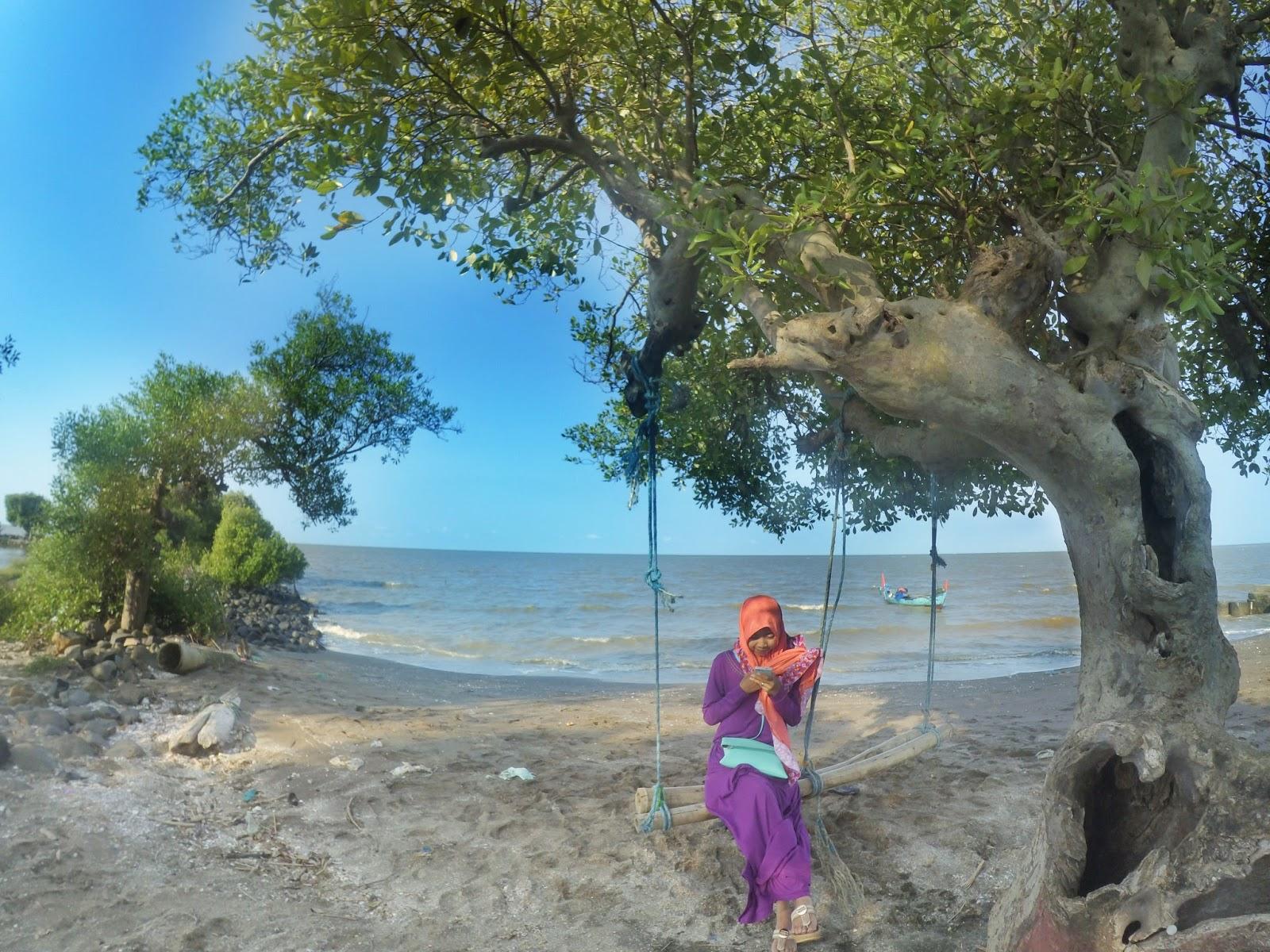 Kucing Imut Pantai Cinta Kabupaten Pati Banyutowo Kab