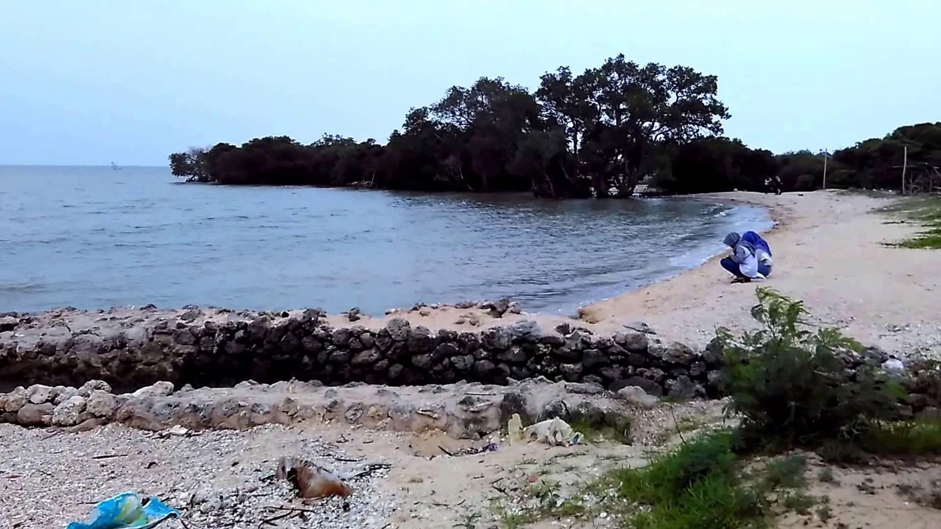 Pantai Kutang Lamongan Pohon Bakau Keunikan Tersendiri Wisata Atas Batu