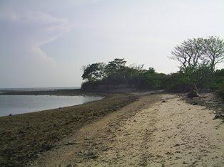 Pesugihan Monyet Putih Pulau Seprapat Pati Jawa Tengah Juwana Kab