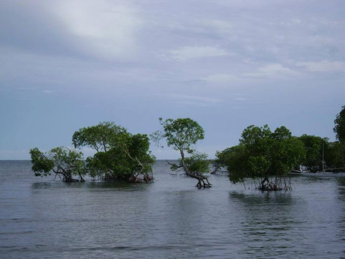 15 Tempat Wisata Sulawesi Barat Wajib Dikunjungi Cintai Hidup Pantai