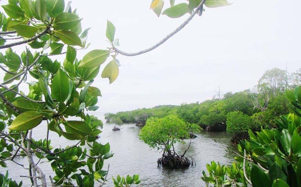 Meneropong Kendala Pengembangan Wisata Alam Polewali Mandar Gonda Pantai Kab