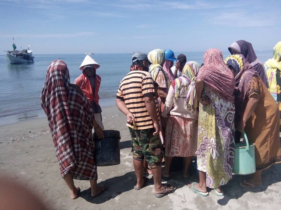 Pappalele Konektor Distribusi Ikan Suku Mandar Blog Kompa Aktivitas Melakukan
