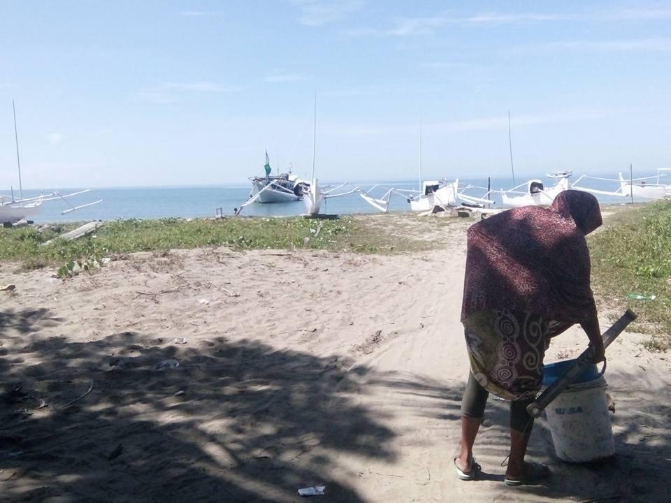 Pappalele Konektor Distribusi Ikan Suku Mandar Blog Kompa Ibu Berprofesi